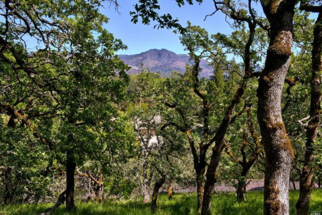807 Wild Oak Drive, Santa Rosa, CA 95409 (#21810289) :: Rapisarda Real Estate