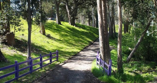 201 Mesa Road Road, Bolinas, CA 94924 (#21810949) :: RE/MAX GOLD