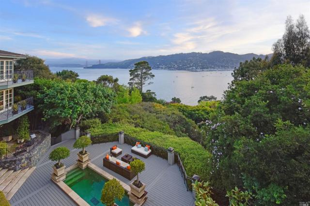 217 Golden Gate Avenue, Belvedere, CA 94920 (#21810974) :: Ben Kinney Real Estate Team