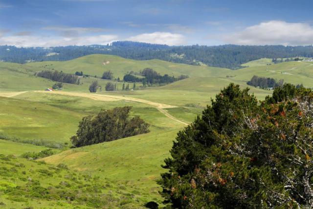 3501 Valley Ford-Franklin School Road, Petaluma, CA 94953 (#21811279) :: Lisa Perotti | Corcoran Global Living