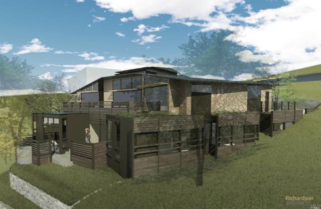 315 Tamlapais Avenue, Mill Valley, CA 94941 (#21811329) :: Ben Kinney Real Estate Team