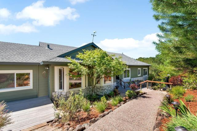 690 Chiquita Road, Healdsburg, CA 95448 (#21811620) :: Ben Kinney Real Estate Team