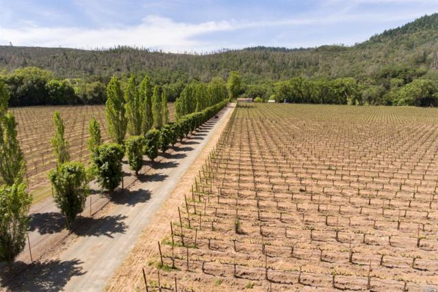 4645 Chiles Pope Valley Road, St. Helena, CA 94574 (#21811691) :: Ben Kinney Real Estate Team