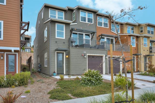 513 Jade Street, Petaluma, CA 94952 (#21812055) :: RE/MAX GOLD