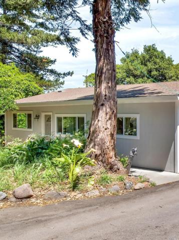 5565 Bodega Avenue, Petaluma, CA 94952 (#21812058) :: RE/MAX GOLD