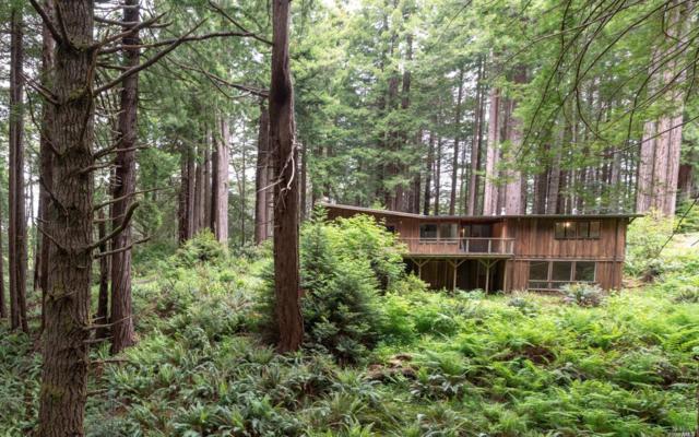 32690-32700 Middle Ridge Road, Albion, CA 95410 (#21812174) :: Ben Kinney Real Estate Team