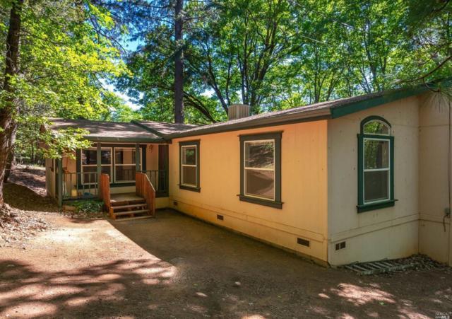 12655 Black Oak Road, Middletown, CA 95461 (#21812297) :: Ben Kinney Real Estate Team