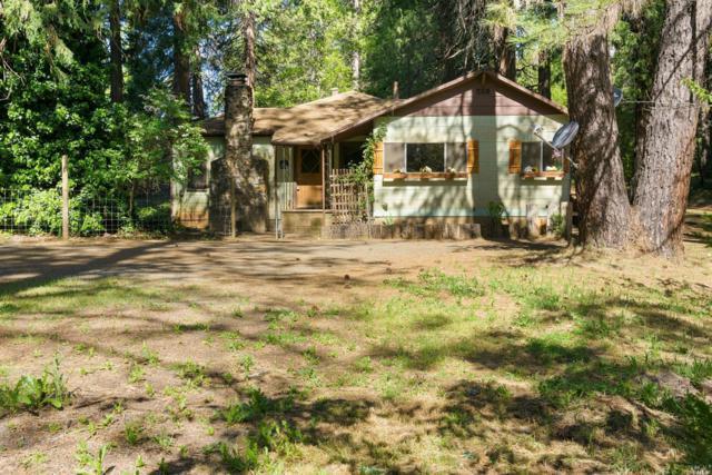 13908 Toby Trail, Grass Valley, CA 95949 (#21812366) :: Ben Kinney Real Estate Team