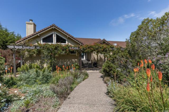 Bodega Bay, CA 94923 :: RE/MAX GOLD