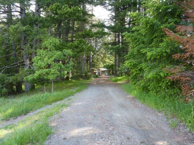 4360 Blackhawk Drive, Willits, CA 95490 (#21812674) :: Ben Kinney Real Estate Team