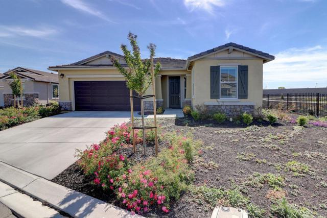 267 Longspur Drive, Rio Vista, CA 94571 (#21812755) :: Rapisarda Real Estate