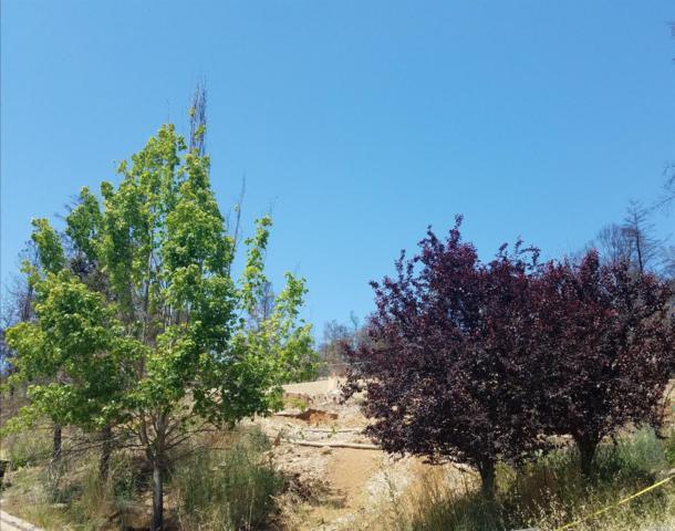 3524 Hanover Place, Santa Rosa, CA 95404 (#21813030) :: Rapisarda Real Estate