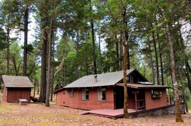 43 Bear Avenue, Lake Pillsbury, CA 95469 (#21813367) :: RE/MAX GOLD