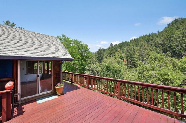 56 Spring Road, Lagunitas, CA 94938 (#21816076) :: Rapisarda Real Estate