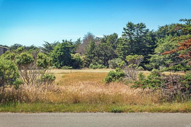 265 Grey Whale, The Sea Ranch, CA 95497 (#21816092) :: Intero Real Estate Services
