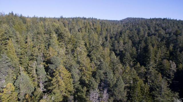 0 Highway 1, Gualala, CA 95445 (#21816429) :: Perisson Real Estate, Inc.