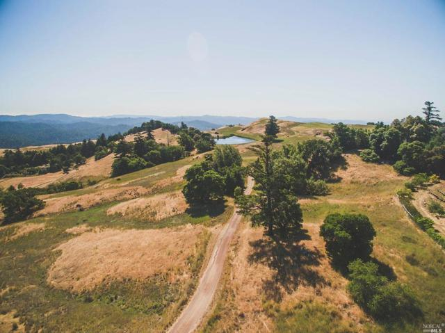 19800 Grizzly Flat Road, Yorkville, CA 95494 (#21816683) :: Perisson Real Estate, Inc.