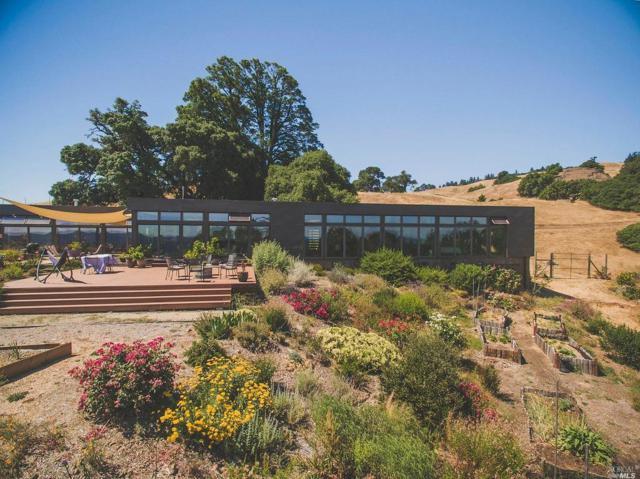 20920 Yorkville Ranch Road, Yorkville, CA 95494 (#21816746) :: Perisson Real Estate, Inc.