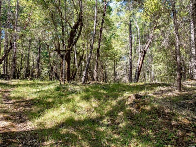18701 Van Zandt Resort Road, Philo, CA 95466 (#21816990) :: Perisson Real Estate, Inc.