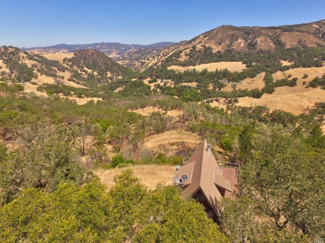21100 Pocket Ranch Road, Geyserville, CA 95441 (#21817010) :: RE/MAX GOLD