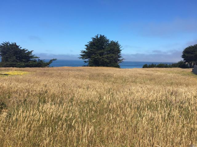 55 Wild Iris, The Sea Ranch, CA 95497 (#21817168) :: Rapisarda Real Estate