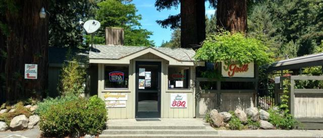 17132 Highway 116 Highway, Guerneville, CA 95446 (#21817171) :: RE/MAX GOLD