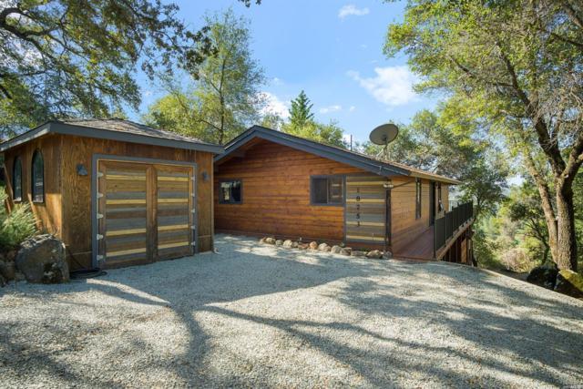 18753 Hummingbird Drive, Other, CA 95946 (#21817205) :: Rapisarda Real Estate