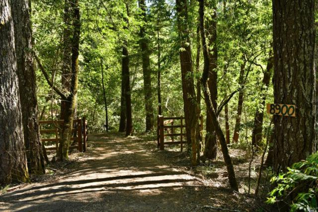 8900 Mill Creek Road, Healdsburg, CA 95448 (#21817576) :: RE/MAX GOLD