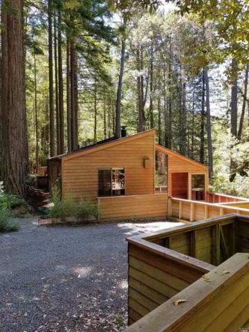 346 Moonraker Road, The Sea Ranch, CA 95497 (#21817598) :: Rapisarda Real Estate