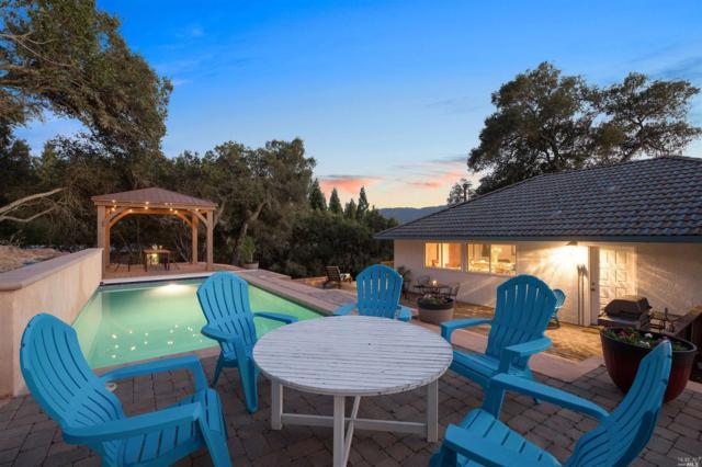 12831 Sonoma Highway, Glen Ellen, CA 95442 (#21817774) :: W Real Estate | Luxury Team