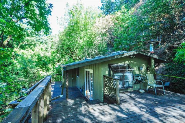 1800 Adobe Canyon Road, Kenwood, CA 95452 (#21817993) :: RE/MAX GOLD