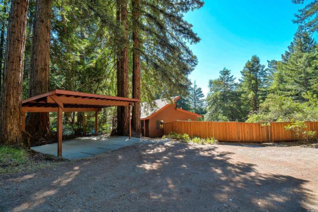 2673 Joy Road, Occidental, CA 95465 (#21818081) :: Rapisarda Real Estate