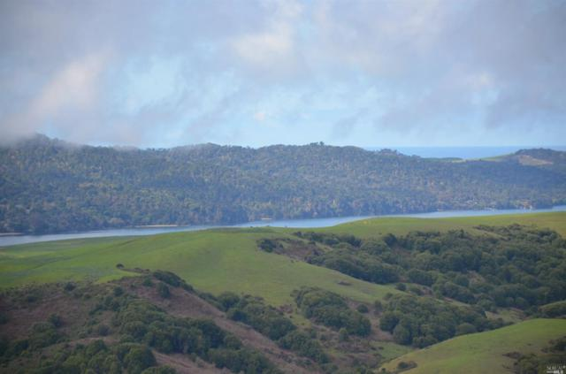 200 Tomasini Canyon Road, Pt. Reyes Station, CA 94956 (#21818099) :: Rapisarda Real Estate