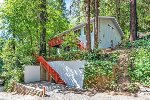 14703 Eagles Nest Road, Guerneville, CA 95446 (#21818134) :: Perisson Real Estate, Inc.