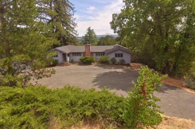 1124 Palomino Road, Cloverdale, CA 95425 (#21818261) :: Windermere Hulsey & Associates