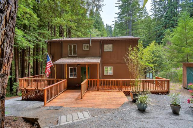 16115 Bittner Road, Occidental, CA 95465 (#21818503) :: Rapisarda Real Estate