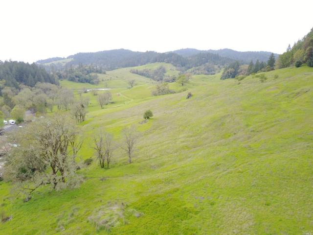 1450 W Hwy 20 Highway, Willits, CA 95490 (#21818613) :: Intero Real Estate Services