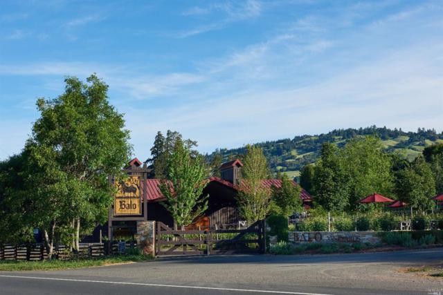 Philo, CA 95415 :: Perisson Real Estate, Inc.