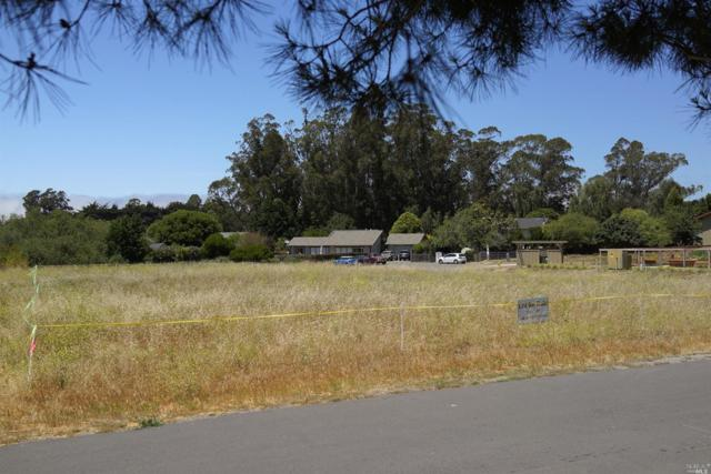 0 6th Street, Pt. Reyes Station, CA 94956 (#21818784) :: Rapisarda Real Estate