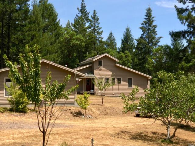 9135 Raven S Pike Road, Boonville, CA 95415 (#21819062) :: W Real Estate   Luxury Team