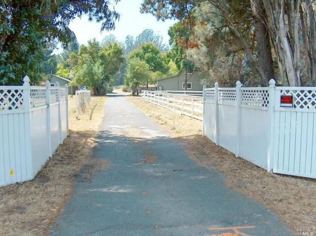 9527 Old Redwood Highway, Penngrove, CA 94951 (#21819381) :: Intero Real Estate Services