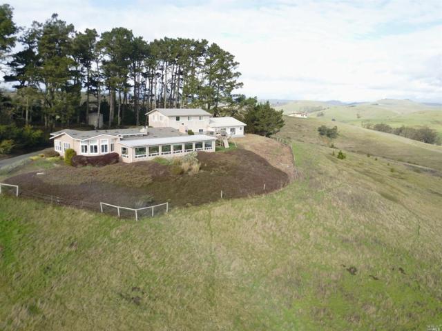 1510 Estero Lane, Bodega, CA 94923 (#21819774) :: Ben Kinney Real Estate Team