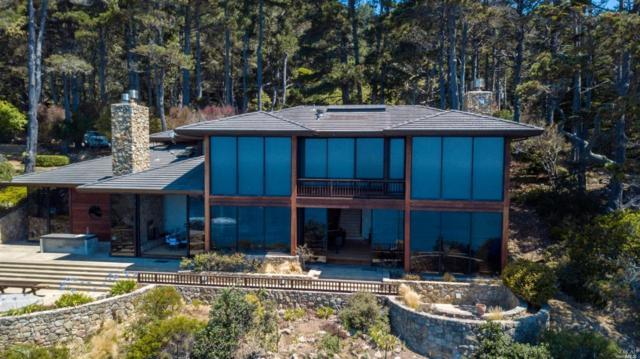 22138 Highway 1, Timber Cove, CA 95450 (#21820056) :: Rapisarda Real Estate