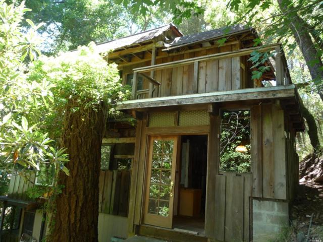 36 Rosario Road, Forest Knolls, CA 94933 (#21820423) :: Ben Kinney Real Estate Team