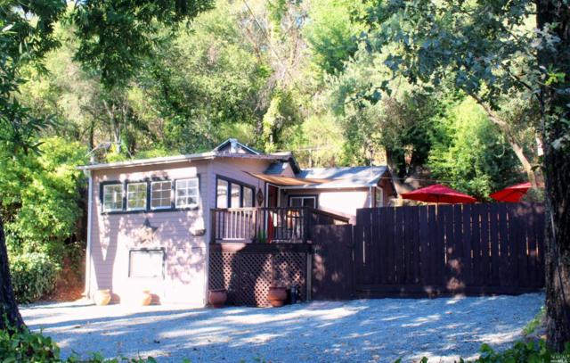 4589 Warm Springs Road, Glen Ellen, CA 95442 (#21820572) :: RE/MAX GOLD