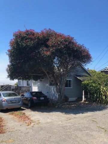 1225 Bay View Street, Bodega Bay, CA 94923 (#21820658) :: RE/MAX GOLD