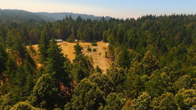 34620 Eureka Hill Road, Point Arena, CA 95468 (#21821469) :: Intero Real Estate Services