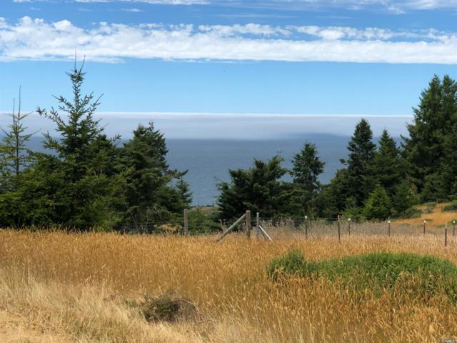 8821 S Hwy 1 Highway, Elk, CA 95432 (#21821637) :: Rapisarda Real Estate