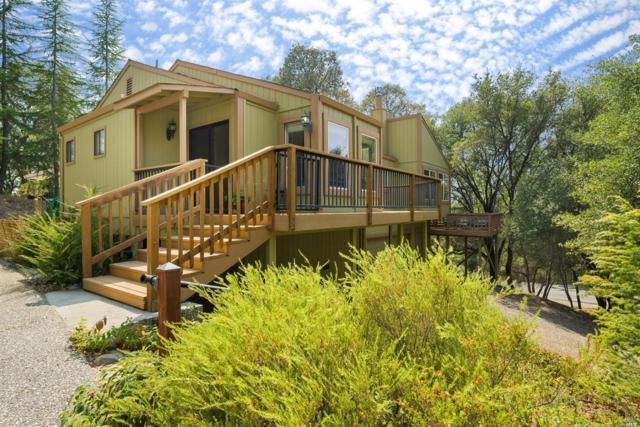 12620 Jayhawk Court, Other, CA 95946 (#21821676) :: Ben Kinney Real Estate Team
