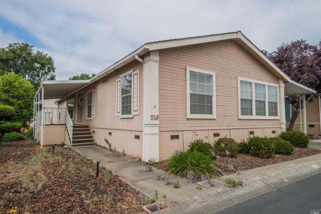 210 Daisy Drive, Napa, CA 94558 (#21822188) :: Intero Real Estate Services